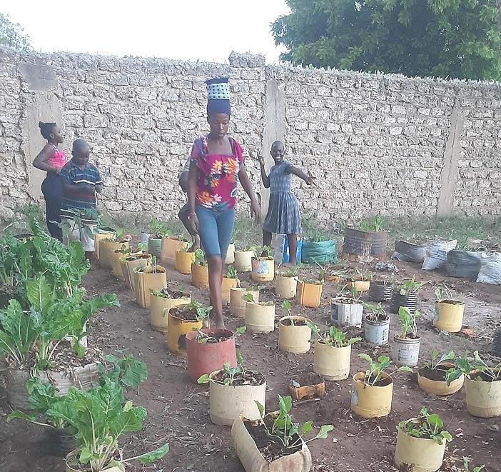 Garten Selbstversorgung Afrika Kenia